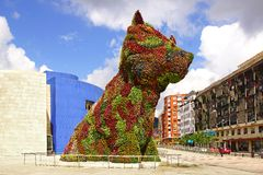 Puppy in front of the Guggenheim Museum. royalty free stock photo