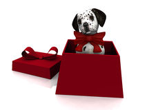 Puppy in gift box Stock Photo