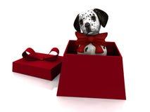 Puppy in gift box. A cute dalmatian puppy in a gift box Stock Photo