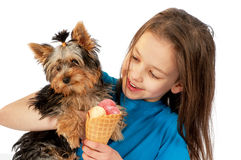 The puppy and the girl eating ice-cream Royalty Free Stock Images