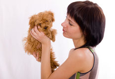 The puppy has turned away Royalty Free Stock Photo