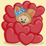 Puppy in hearts Royalty Free Stock Photography