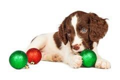 Puppy het Spelen met Kerstmisornamenten Royalty-vrije Stock Foto's