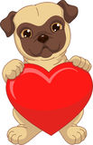 Puppy holding a red heart Stock Photos
