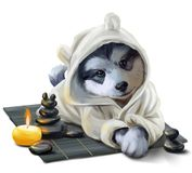 Puppy Husky and stones relax. Watercolor drawing. White background vector illustration