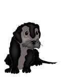 Puppy Illustration Royalty Free Stock Image