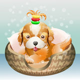 The puppy. Illustration with cute puppy in a dog bed against festive background royalty free illustration