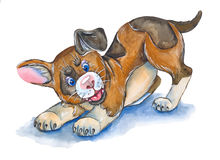 Puppy. Illustration puppy ,made with watercolor . on white background Stock Photography