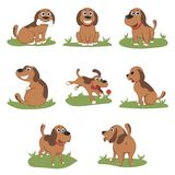 Puppy Installed Funny Cartoon Puppy in Different Poses. Puppy in the box, in the hat of Santa Royalty Free Stock Photo