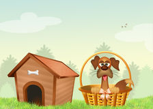 Puppy in the kennel. Illustration of puppy in the kennel Stock Images
