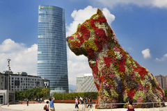 Puppy kissing the Iberdrola skyscraper Royalty Free Stock Photo