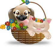Puppy and kitten in basket with flowers Royalty Free Stock Photography