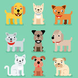 Puppy and kitten vector pet flat icons Royalty Free Stock Photos