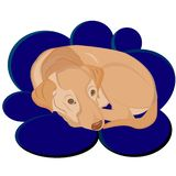 Puppy Labrador Retriever cozy lying cloud vector illustration