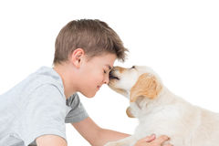 Puppy licking boy over white background Stock Photo