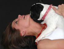 Puppy Licks Stock Images