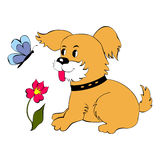 Puppy looks at the butterfly. Cute puppy looks at the butterfly royalty free illustration