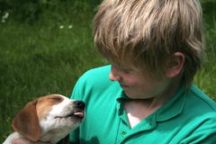Puppy Love. Puppy has his eyes closed and seems to be sticking his tongue out at the little boy royalty free stock photography