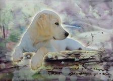 Puppy& x27; mondo di porpora di s fotografia stock