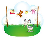 A puppy near the hanging baby clothes Stock Photo