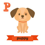 Puppy. P letter. Cute children animal alphabet in vector. Funny Stock Photos