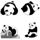 Puppy panda icons. Vector collection of panda sleeping and playing Royalty Free Stock Photography