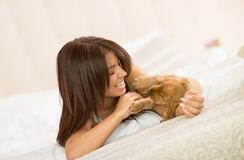 Puppy pet exhilarating his female owner. Cocker Spaniel puppy pet exhilarating his pretty female owner royalty free stock photography