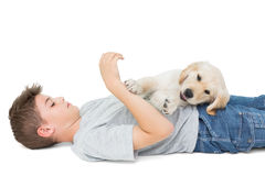Puppy playing on boy lying over white background Royalty Free Stock Photography