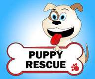 Puppy Rescue Shows Saving Purebred And Canine Stock Photo