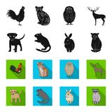 Puppy, rodent, rabbit and other animal species.Animals set collection icons in black,flet style vector symbol stock. Illustration Stock Photo