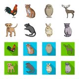 Puppy, rodent, rabbit and other animal species.Animals set collection icons in cartoon,flat style vector symbol stock. Illustration Stock Images