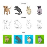 Puppy, rodent, rabbit and other animal species.Animals set collection icons in cartoon,outline,flat style vector symbol. Stock illustration Royalty Free Stock Photography