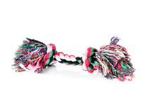 Puppy rope teether. Shot on white Stock Images