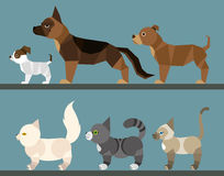 Puppy set - flat design Royalty Free Stock Photography