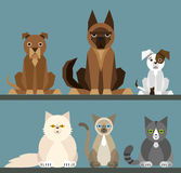 Puppy set - flat design Stock Images