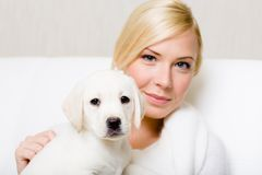 Puppy sitting on the hands of pretty woman Stock Photo