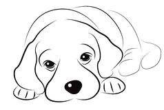 Puppy sketch Stock Image