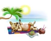 Puppy sunbathes royalty free illustration