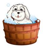A puppy taking a bath stock illustration