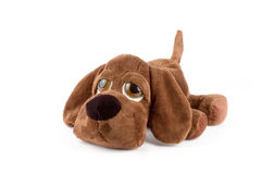 Puppy toy Stock Photos