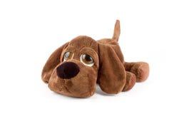 Puppy toy. Sad puppy toy over white background Stock Photos