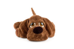 Puppy toy. Sad puppy toy over white background Royalty Free Stock Photography
