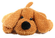 Puppy toy. Toy of puppy isolated on white royalty free stock photos