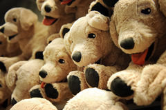 Puppy toy Stock Photo