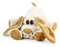 Puppy toy Stock Photography