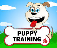 Puppy Training Represents Instruction Trainers And Canine Stock Photos