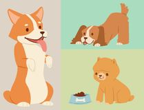 Puppy cute playing dogs characters funny purebred comic happy mammal doggy breed vector illustration. Puppy vector illustration cute dogs characters funny royalty free illustration