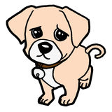 Puppy  on white vector Stock Images