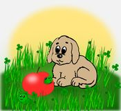 Puppy and worm eaten apple. Stock Images