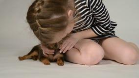 Puppystuk speelgoed terriër en kind op een witte achtergrond stock footage
